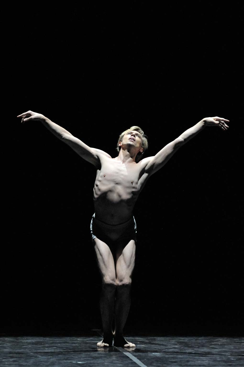 Principal dancer Vladimir Malakhov performing *The Dying Swan*, choreography Mauro de Candia (Berlin, 2010). Photo © Aris Fotografie